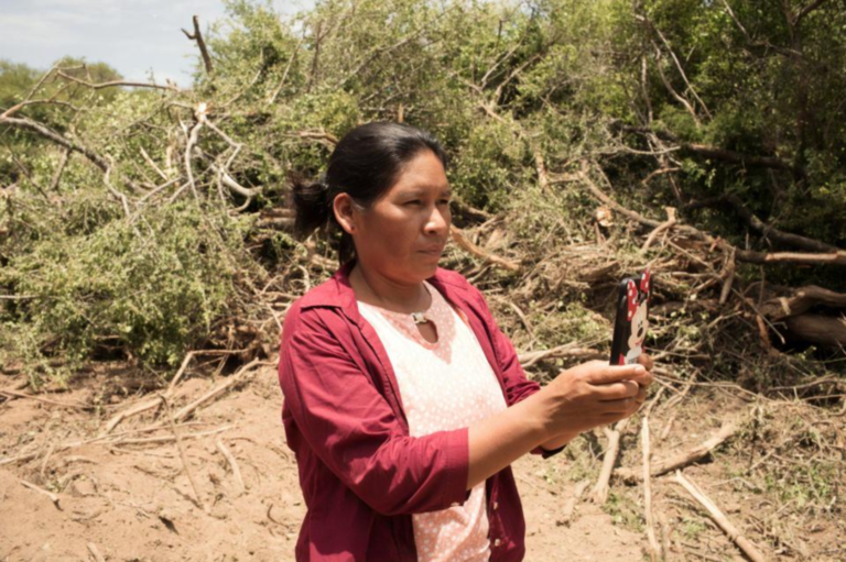 Betty Rubio Padilla uses her cell phone to monitor the Amazon Rainforest for deforestation.